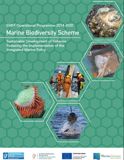 Marine Biodiversity Scheme Brochure
